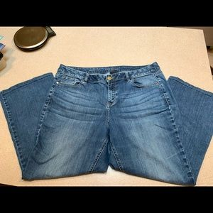Lane Bryant jeans boot cut size 16, short